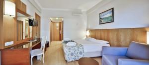 Room Standart 1 (Copy)